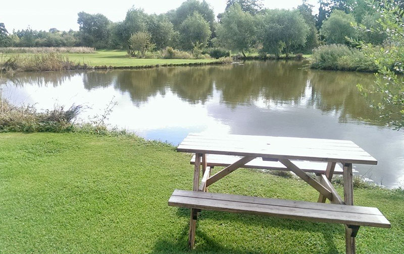 The lake and picnic table