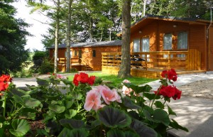 Allerton Park: Holiday Homes for Sale